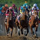 Online OTB Horse Betting Sites